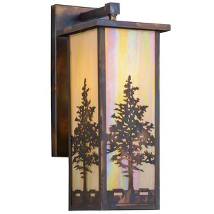 Best Reviews Greenbriar Oak 1-Light Outdoor Wall Lantern By Meyda Tiffany