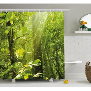 Forest with Sunray Shower Curtain + Hooks