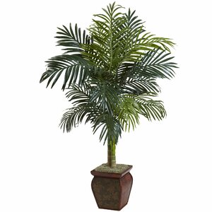Palm in Decorative Vase