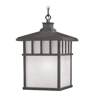 Affordable Teminot Rustic 1-Light Outdoor Hanging Lantern By Bloomsbury Market