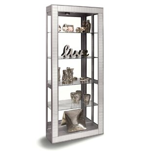 Morphis Lighted Curio Cabinet