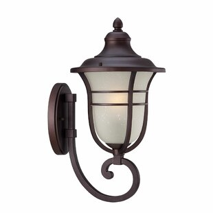 Best Reviews Berryhill Outdoor Sconce By Fleur De Lis Living