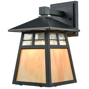 Bargain Talmo 1-Light Outdoor Sconce By August Grove