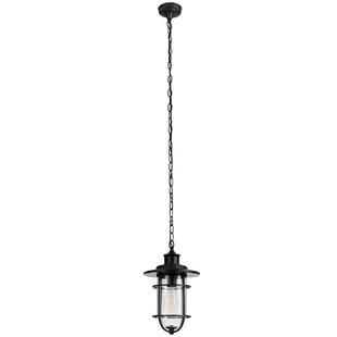 Turner 1-Light Outdoor Hanging Lantern