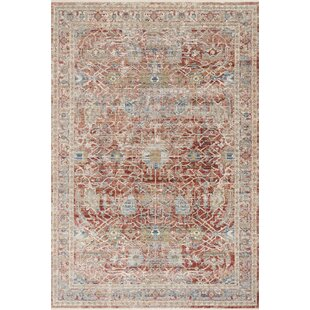 16 X 20 Rugs Wayfair