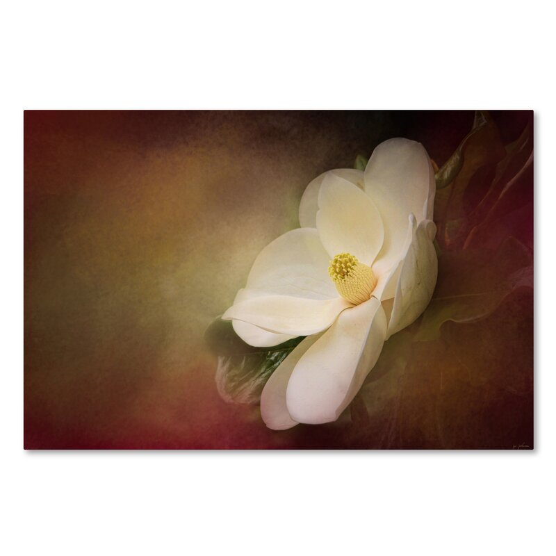 Trademark Art Magnolia In Bloom 1 Graphic Art Print On Wrapped Canvas Wayfair