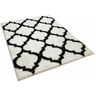 Compare prices Aranson Humble Moroccan Lattice Shag White Area Rug By Charlton Home