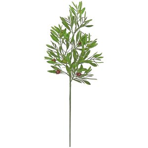 Olive Branch (Set of 2)