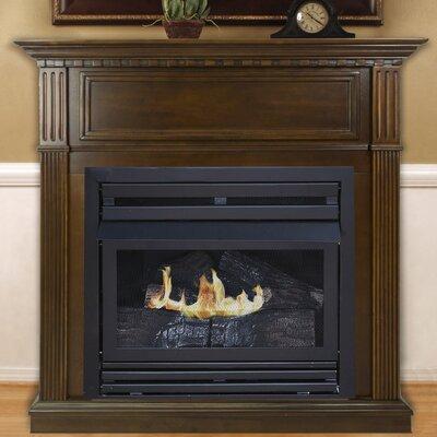 Shela Vent Free Propane Fireplace Darby Home Co