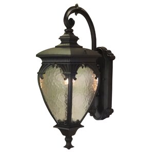 Fleur de Lis 1-Light Outdoor Wall lantern