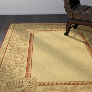 Catori Natural / Red Indoor/Outdoor Area Rug