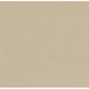 Direction 12 inch  x 12 inch  Porcelain Field Tile in Proportion Polished
