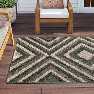 Amora Indoor/Outdoor Area Rug