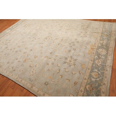 Isabelline Etta Traditional Persian Hand Tufted 9 X 12 Wool Aqua