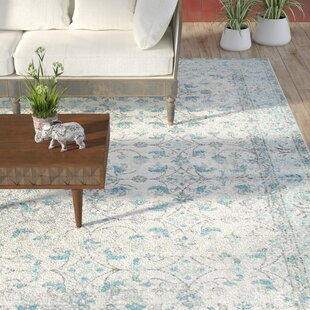 Shopping for Navarrete Aqua/Beige/Gray Area Rug By Lark Manor