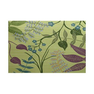 Vinoy Green Indoor/Outdoor Area Rug