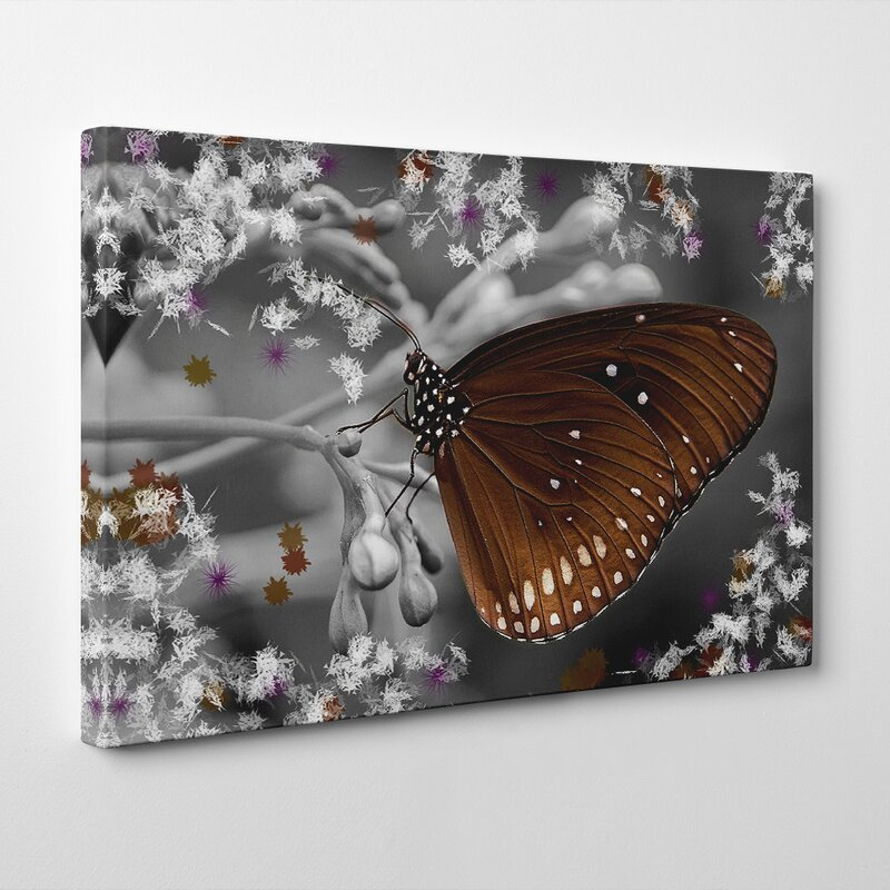 Big Box Art Flower And Butterfly Photographic Print On Canvas Wayfair Co Uk