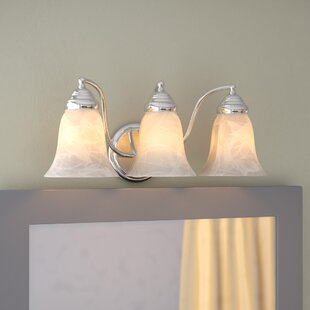Find for Boehme 3-Light Vanity Light By Charlton Home