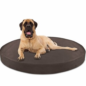 Deluxe Orthopedic Memory Foam Round Dog Pillow