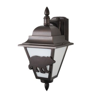 Compare & Buy Penfield 1-Light Outdoor Wall Lantern By Alcott Hill