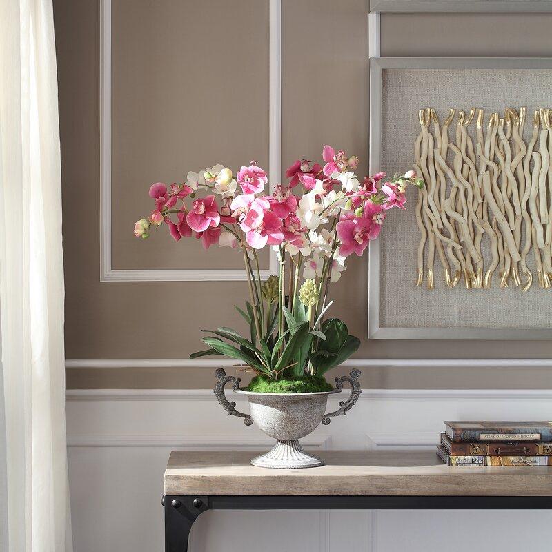 floral home decor orchid floral design wayfair.htm rosdorf park orchids floral arrangement in pot wayfair  rosdorf park orchids floral arrangement