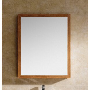 Langley Street Emerson Accent Wall Mirror