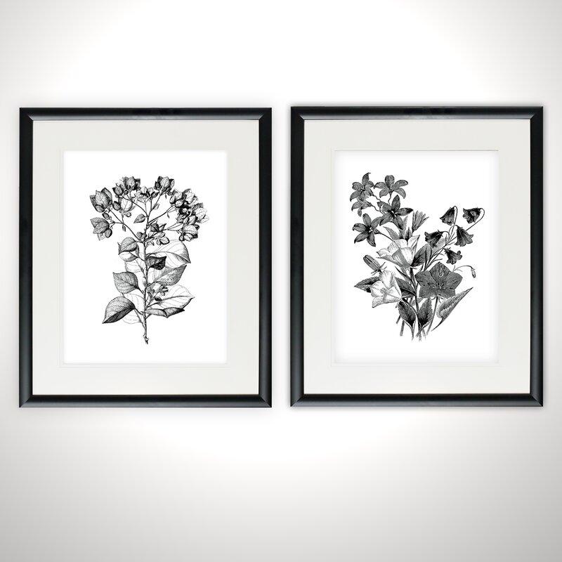Ophelia Co Botanical Black And White 2 Piece Framed Acrylic Painting Print Set Reviews Wayfair
