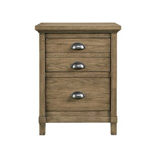 Driftwood Park 2 Drawer Nightstand by Stone & Leigh™ Furniture