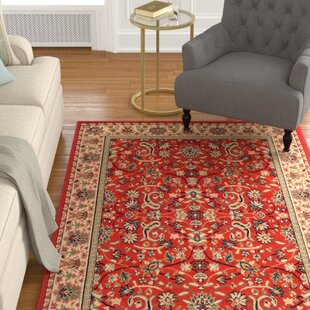 Alexandria Polypropylene Burnt Red Indoor/Outdoor Area Rug