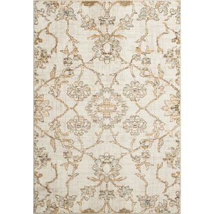 Online Reviews Rattlesnake Hill Keomah Ivory/Gold Area Rug By Bungalow Rose