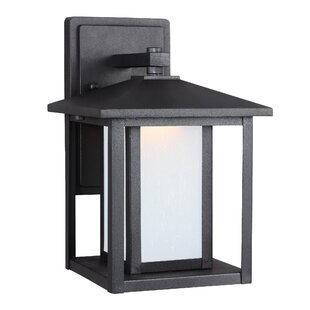 Hayner 1-Light Outdoor Wall Lantern by Three Posts Today Sale Only