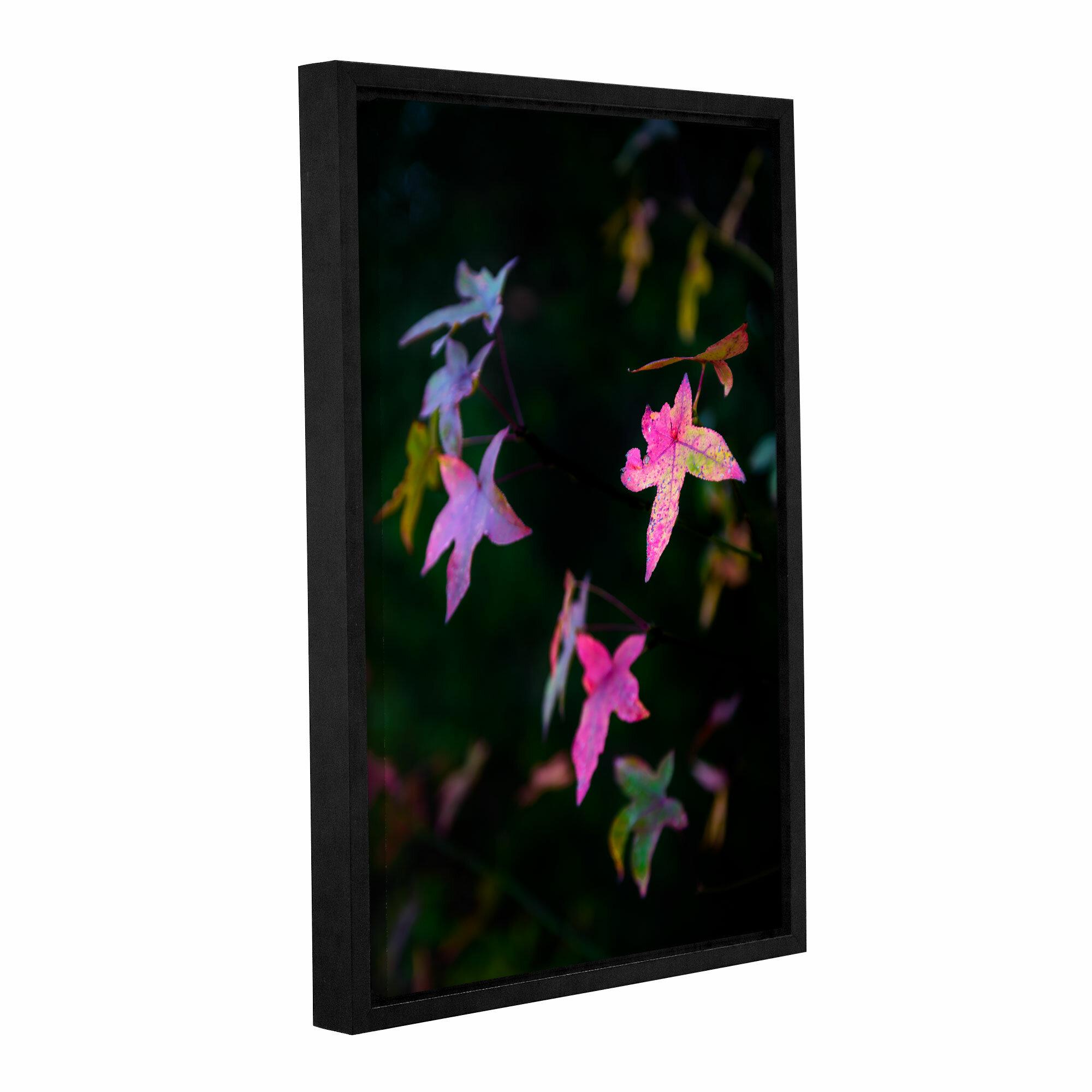 Latitude Run Autumn Stars Framed Photographic Print On Wrapped Canvas Wayfair
