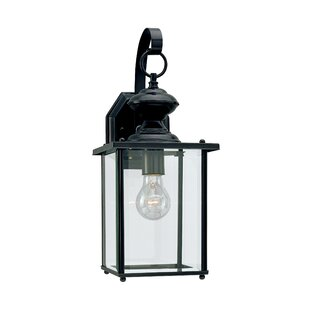 Carmen 1-Light Outdoor Wall Lantern By Alcott Hill Outdoor Lighting