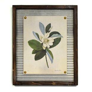 5b51603089  Flowering Magnolia  Framed Graphic Art Print