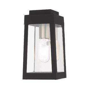 Mamie Outdoor Wall Lantern