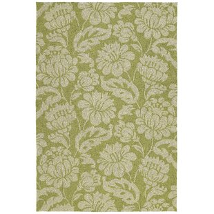 Glenn Wasabi Floral Indoor/Outdoor Area Rug By Charlton Home
