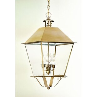 Look for Theodore 4-Light Outdoor Hanging Lantern By Darby Home Co