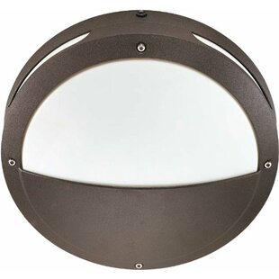 Affordable Price Dierks 2-Light Outdoor Flush Mount By Williston Forge