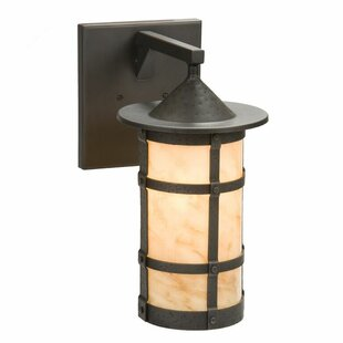 Affordable Price Pasadena 1-Light Outdoor Wall Lantern By Steel Partners