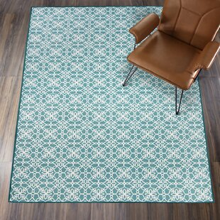 Hand Woven Aqua Blue/White Indoor/Outdoor Area Rug