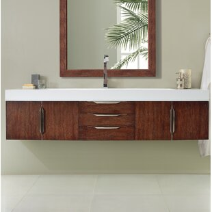 Whitstran 73 Wall-Mounted Single Bathroom Vanity Set by Brayden Studio