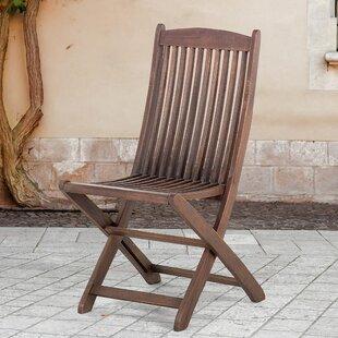 Maui Folding Patio Dining Chair (Set of 2)