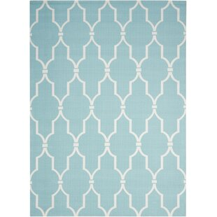 Galina Aqua Indoor/Outdoor Area Rug