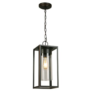 Polak 1-Light Outdoor Pendant