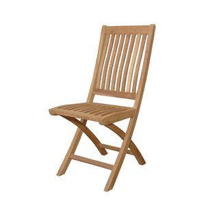 Tropico Folding Teak Patio Dining Chair (Set of 2)