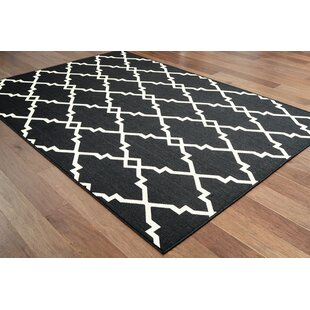 Cate Casual Black Indoor/Outdoor Area Rug