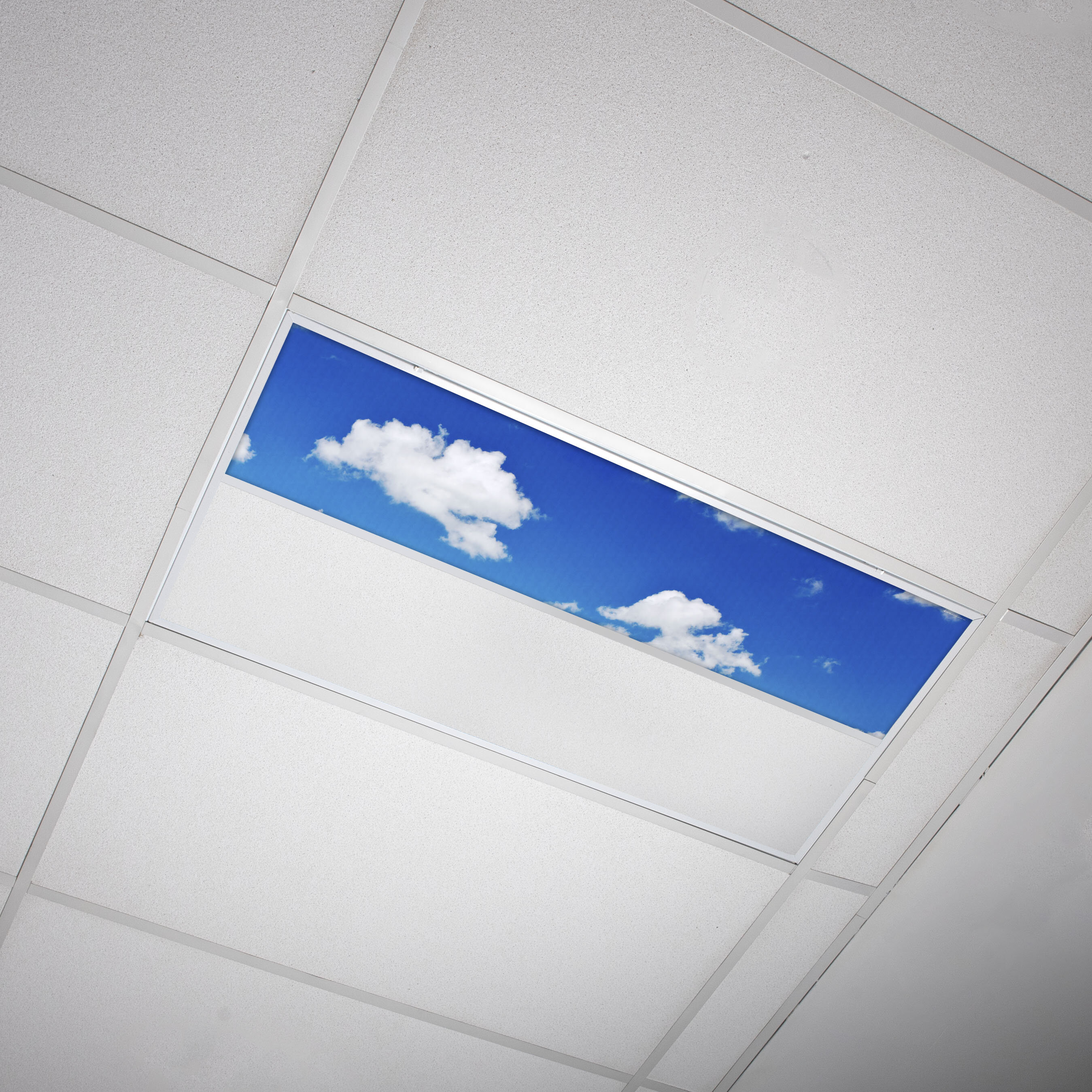 Octo Lights Fluorescent Light Covers Flexible Ceiling Light Diffuser Panels Decorative Clouds For Classrooms And Offices 012 Wayfair Ca