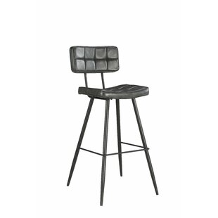 Alvarado 26 Bar Stool (Set of 2) Williston Forge