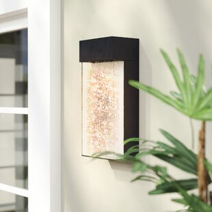 Pelkey LED Outdoor Sconce