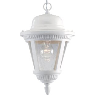 Inexpensive Triplehorn Ribbed 1-Light Outdoor Pendant By Alcott Hill